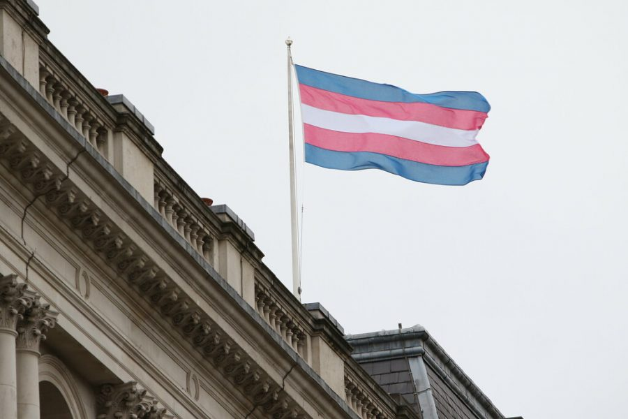 """""""Transgender Pride Flag"""" by Foreign, Commonwealth & Development Office is licensed with CC BY 2.0."""